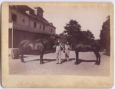 Chevaux de race course hippique Haras de Thil 1899 Vintage albumine