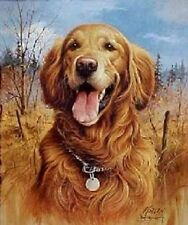 """GOLDEN RETRIEVER Hunting on ONE 16 inch square Fabric Panel to Sew.Pic is 8x11"""""""
