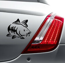CARP FISHING FUNNY STICKER Car Bumper Van Window Laptop VINYL DECALS STICKERS