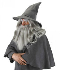 GANDALF Hat Wizard sorcerer Hat LOTR The Hobbit Licensed Costume NEW