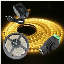 5M 300LED Non-Waterproof SMD 3528 Flexible LED Strip Light 12V&2A Adapter&12V DC