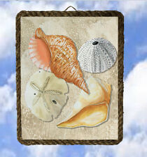 Tropical Beach 54 Sea Shells 54 Ocean Wall Decor Coastal lalarry Ventage framed