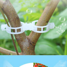 20X Plant Support Vine Garden Trailing Vegetables Orchid Hanging Plastic Clips
