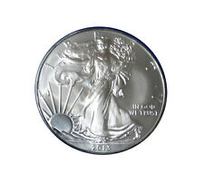 2013 1 oz Silver American Eagle Brilliant Uncirculated 99.9% pure (with capsule)