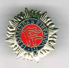 Irish Defence Forces Oglaigh na  h Eireann pin badge