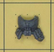 Warhammer 40K marines espaciales Command Squad boticario torso frontal