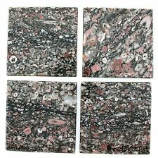 ONE 52mm Square Top Polished Fossil Stone Cab Cabochon Tile Gemstone T4