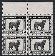 Newfoundland Neufundland 1941 ** Mi# 179c L:12,5 Hund dog 4-Block KW 32 Euro