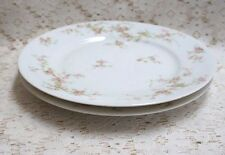 """THEODORE HAVILAND """"Lucille"""" Limoges FRANCE salad/bread 8.5"""" plates (2)"""