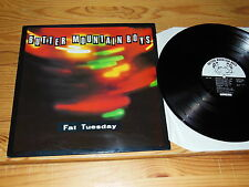 BUTTER MOUNTAIN BOYS - FAT TUESDAY / UK-LP 1990 MINT-