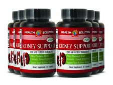 Cinnamon Powder - KIDNEY SUPPORT 700mg - Protects The Cardiovascular System 6B