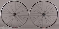 Velocity A23 Black Rims Road Bike Wheelset 32h Fits Campagnolo 9 10 11 Speed