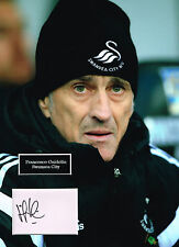 Francesco GUIDOLIN SIGNED Autograph 16x12 Photo Mount AFTAL COA Swansea Manager