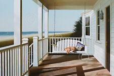Lu Zhen Huan Swing Chair Porch Animal Dog Ocean Beach Coastal Print Poster 26x18