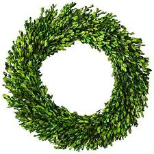 """Preserved Boxwood Leaves Wreath - (21.25"""") - Smith & Hawken™"""