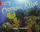Oceans Alive: Phase 5, Bk. 18: Band 14/Ruby by Angie Belcher (Paperback, 2007)