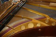 Bösendorfer MARRONE ALA stutzflügel GRAND PIANO PIANOFORTE Fort pianoforte Salon ala