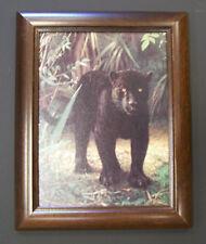 """Charles Frace  9""""x12"""" Framed Canvas Print """"Black Jaguar"""""""