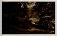 (Gh058-341) Real Photo of BOLTON ABBEY Woods by Walter Scott c1930 Unused EX