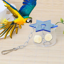 Pet Parrot Bird Cage Feeder Star Hanging Foraging Cockatoo Chew Feeding Box Toys