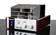 Valve Tube Audio Power Amplifier Class A Hi-Fi Stereo Hybrid Integrated Amp USB