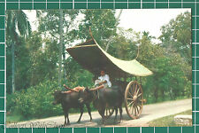 CWC   Postcards   Malaya   1950s Malay Bullock Cart, Malacca #3319 Near Mint