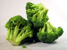 Broccoli- Early fall Rapini- 100 Seeds - 50 % off sale