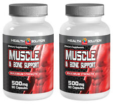 Muscle and Joint Healing and Recovery 500mg (2 Bottles, 180 Capsules)