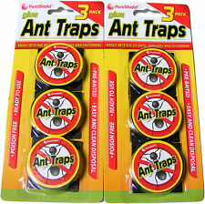 6 PACK OF GLUE ANT TRAPS - READY TO USE - PRE-BAITED - POISON FREE - DISPOSABLE
