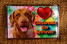 Chesapeake Bay Retriever Dog Gift Fridge Magnet 77x51mm Xmas stocking filler