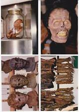 LOT TWO: 4 behind-the-scenes photos RETURN OF THE LIVING DEAD PART 2 (1988)