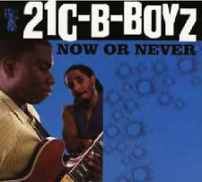 Now or Never by 21C-B-Boyz (CD, Mar-2004, 21st Century Blues Records)