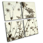 Plants Floral Meadow Vintage Shabby Chic Canvas Art Picture Print Wall Photo