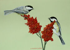 Original Watercolor Black-Capped Chickadees on Sumac Wildlife Art Sally Porter