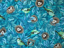BIRDS ROBINS IN NEST EGGS CANARY BLUE BIRDS COTTON FABRIC FQ OOP