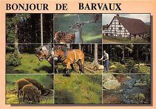 BR4094 Barvaux cerf dear horse chaveaux   belgium