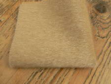 9 x 9 Inch Long Pile Sassy Bear Fabric Tan