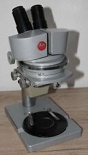LEITZ grande campo STEREO MICROSCOPIO Microscope con nasali W 16x (+ oculare micrometri)