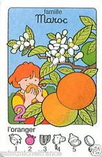 Orange tree ORANGER FLEURS  MAROC Morocco PLAYING CARD CARTE A JOUER