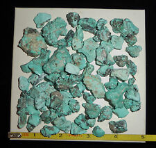 DINO: Natural Fantastic BLUE CAMPITOS TURQUOISE Nuggets - 149 gr. Lapidary Rough