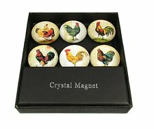 Chicken Hen Rooster Farm Kitchen Refrigerator Magnet Gift Boxed Set of 6 Magnets