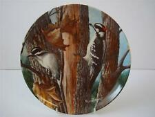 BRADEX BIRDS OF YOUR GARDEN COLLECTION THE DOWNY WOODPECKER PLATE