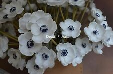 31PCS Real Touch White Silk Anemone Stem With Blue Center For Wedding Bouquets