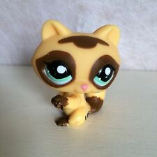 LITTLEST PET SHOP RACCOON 1502 YELLOW BROWN GREEN EYES - 6 pictures.