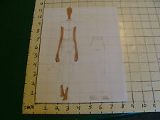 vintage Funky, Hip, Fashion Drawing: front & back brown skin, diagonal lines