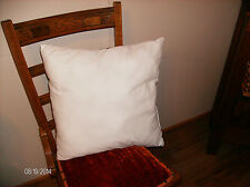 "New 17"" X 17"" Pillow insert Square  Made in USA"