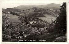 Nieder-Lindewiese Lipová-lázně Schlesien Rastplatz Wald alte AK Polen ~1930/40