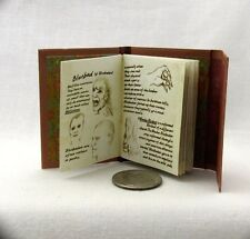 1:6 Scale WESEN BOOK OF LORE Readable Book Grimm Blythe BJD Barbie Play Scale