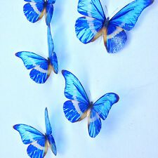 10 Luxury Blue 3D Wedding Decoration  Butterflies Picture Frame Accessories