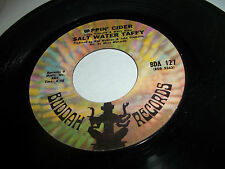 SALT WATER TAFFY RARE PSYCH POP 45 SIPPIN' CIDER /LOOP DE LOOP SCARCE BUDDAH